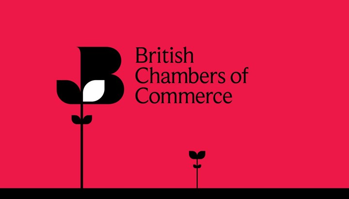 British Chambers of Commerce Podcast: Response to Autumn Statement