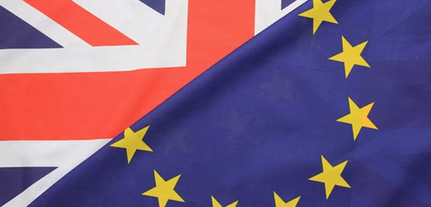 Suffolk Chamber's Business Brexit Checklist launched