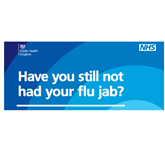 Seasonal Flu Information for 2018-19