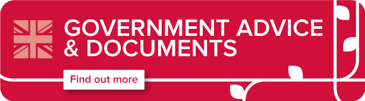 Government advice and documents graphic and link