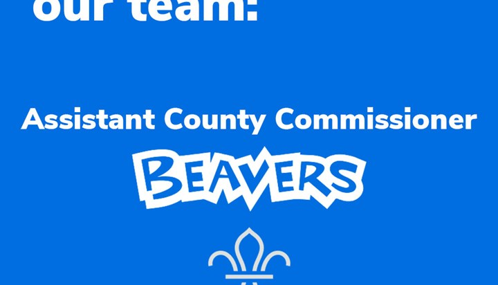 Suffolk Scouts Shapes Lives – County Team Manager Beavers Required
