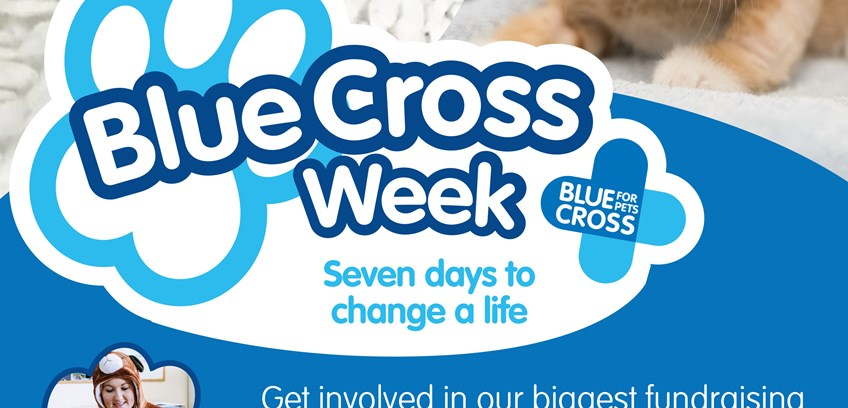 Blue Cross Week 2019